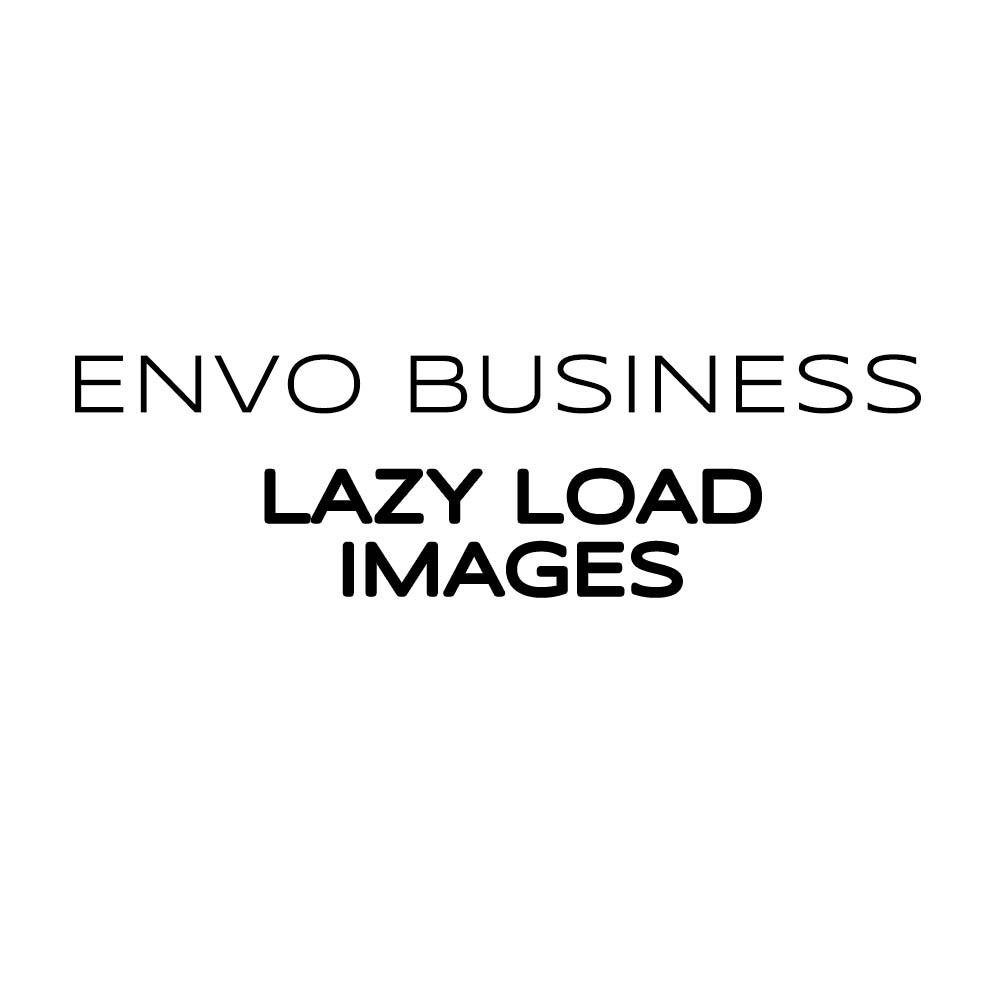Envo Business Lazy Load Images - EnvoThemes